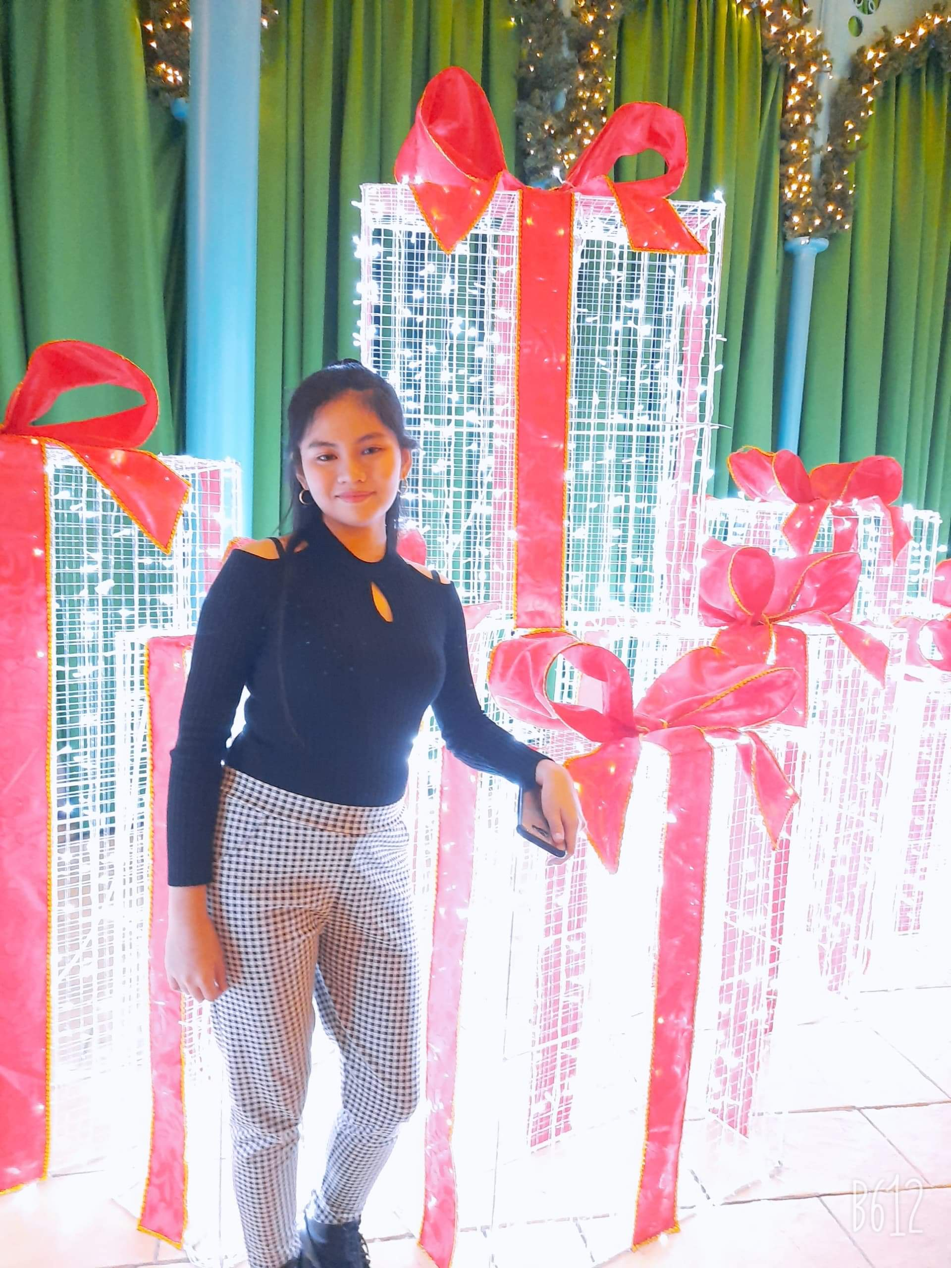 International Youth Journal Author Bianca Ysabelle Baldemor